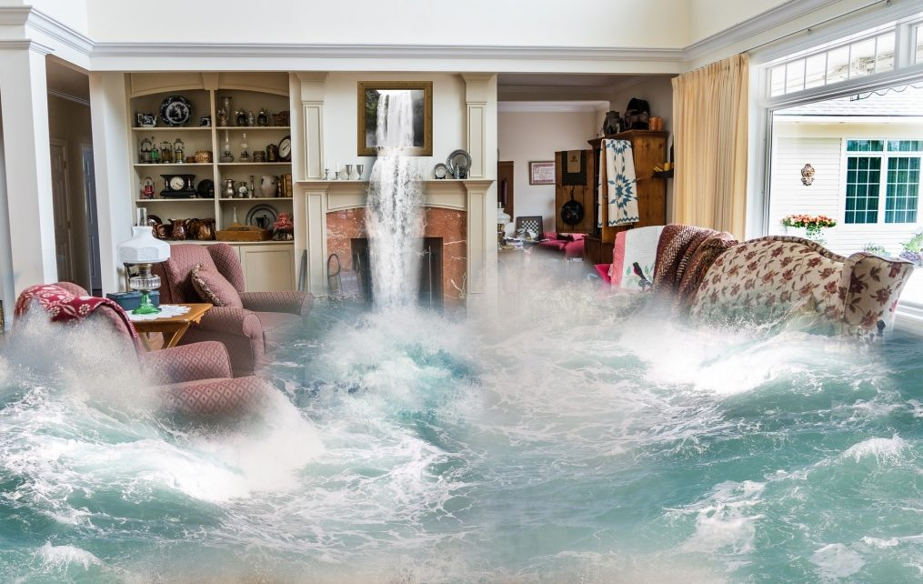 Basement Flooding: What To Know and Do Before Calling the Plumber